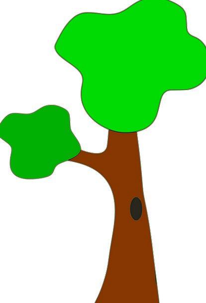 Green Lime Landscapes Sapling Nature Leaves Greene