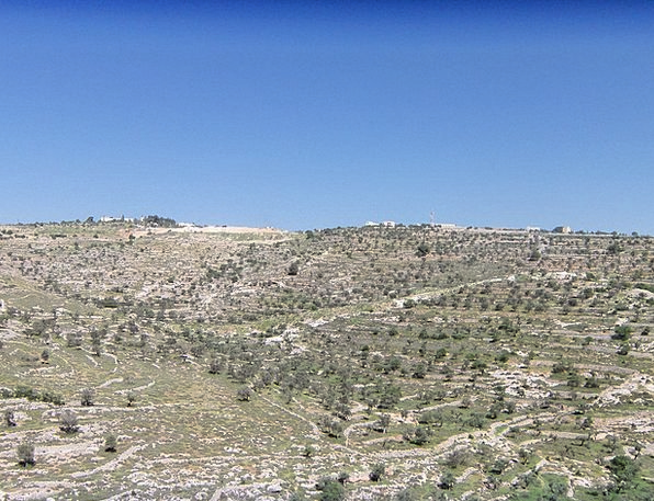 Israel Landscapes Nature Landscape Hillside Scenic