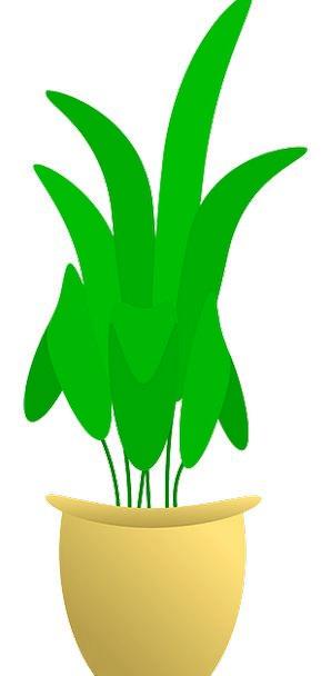 Flowerpot Planter Landscapes Vegetable Nature Flow