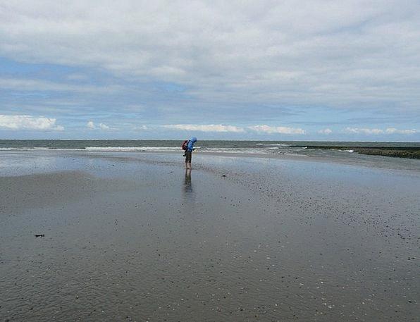 Beach Walk Vacation Seashore Travel Sea Marine Bea