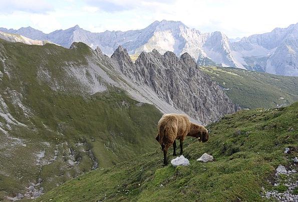 Mountain Crag Landscapes Ewe Nature Landscape Scen