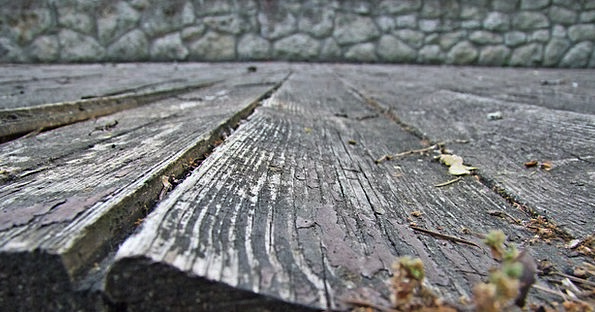 Wood Timber Textures Ancient Backgrounds Wooden Ol