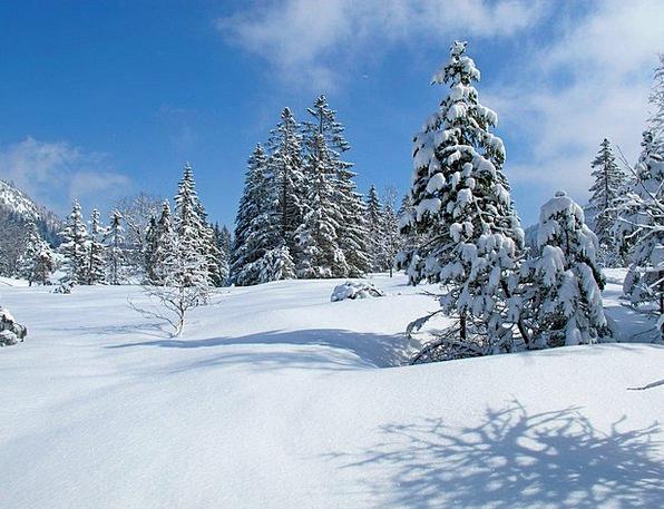 Allgäu Landscapes Season Nature Landscape Scenery