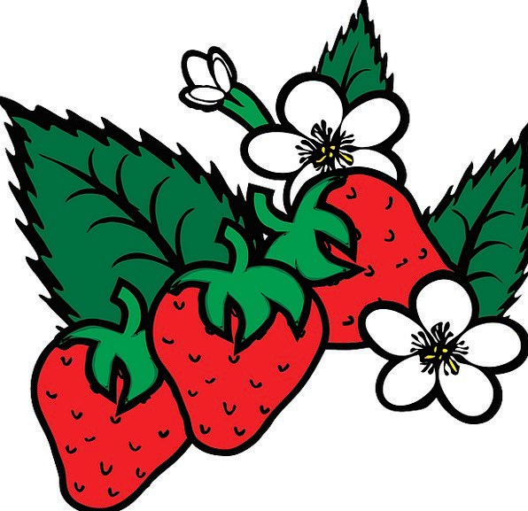 Strawberry Drink Food Berry Fragaria Sweet Food No