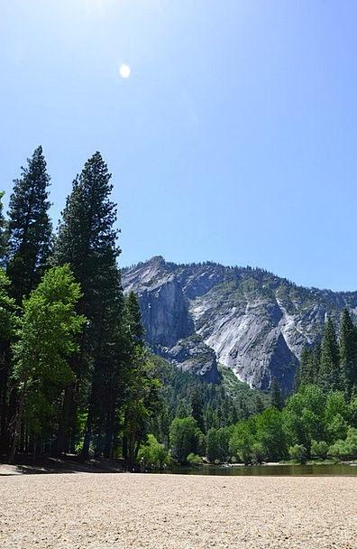Yosemite Landscapes Nature Forest Woodland Califor