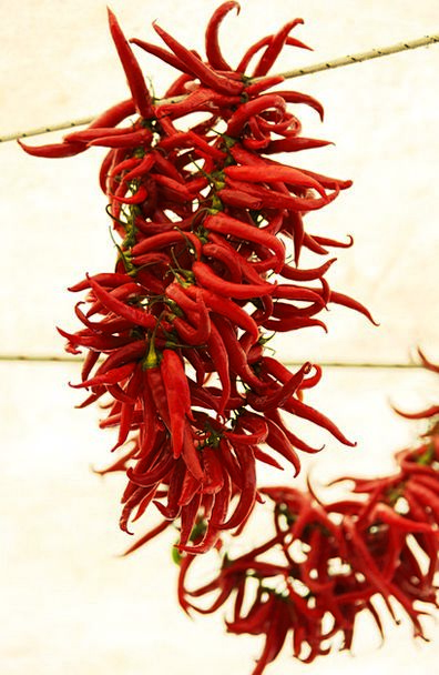 Bunch Group Drink Food Chilli Chili Hanging Color