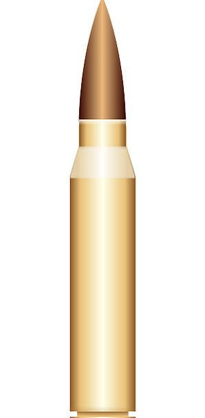 Bullet Shot Bomb Cartridge Container Shell Free Ve