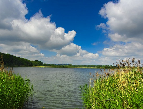 Pond Pool Landscapes Aquatic Nature Clouds Vapors
