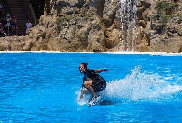 Dolphin Ride Fashion Lady Beauty Trainer Coach Wom