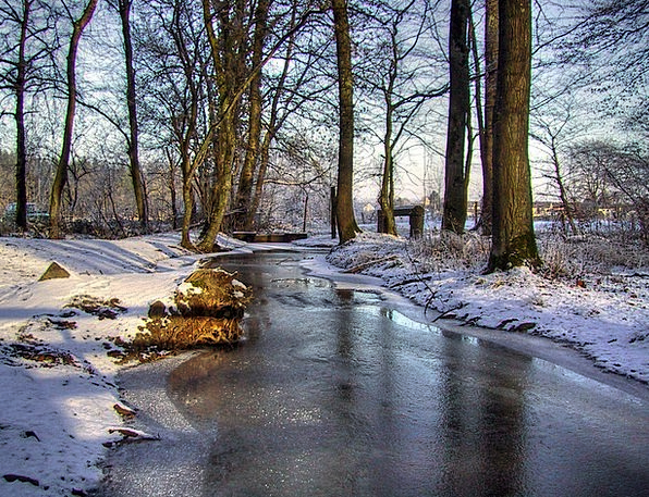 Winter Season Landscapes Snowflake Nature Bach Sno