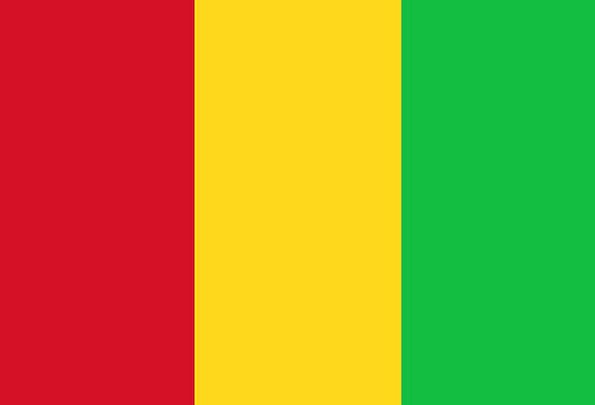 Mali Standard National Flag Flag Nationality Natio