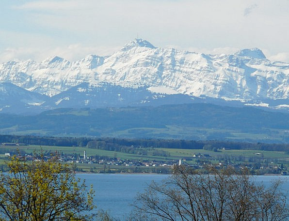 Lake Constance Landscapes Scenery Nature Mountains