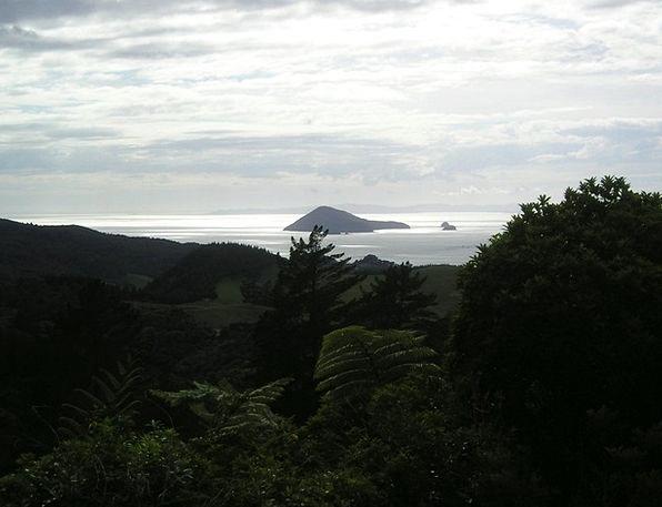 New Zealand Landscapes Isles Nature Back Light Tai