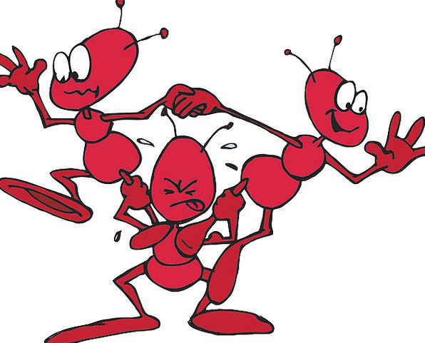 Ant Humorous Comedy Funniness Funny Lifting Exciti
