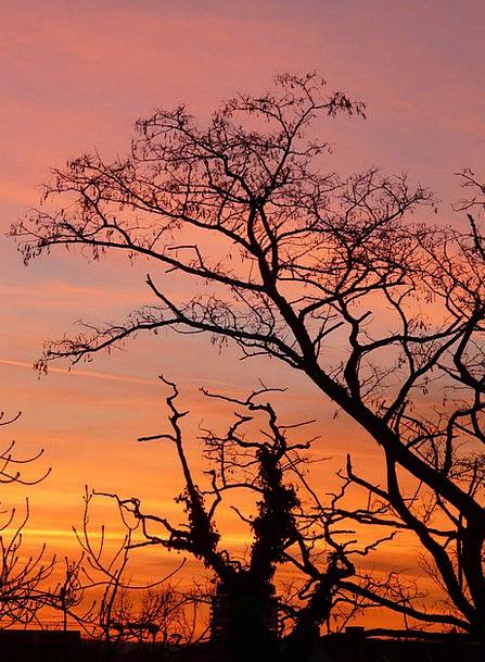 Sunset Sundown Vacation Warmth Travel Clouds Vapor