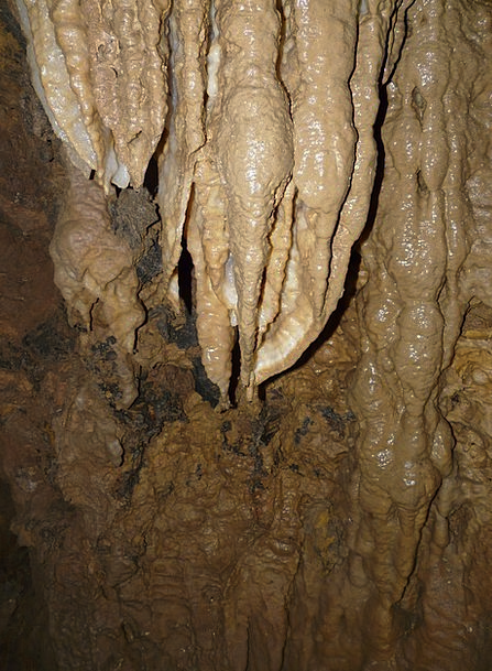 Stalactite Icicle Cavern Cave Tour Cave Descent Ad