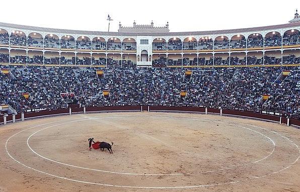 bull fighting 1920x1080 hd - photo #18