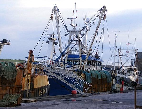 Trawlers Ships Fishing Angling Boats Nets Webs Har