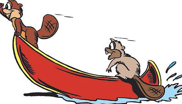 Animals Faunae Aquatic Boat Ship Water Tail End Fr