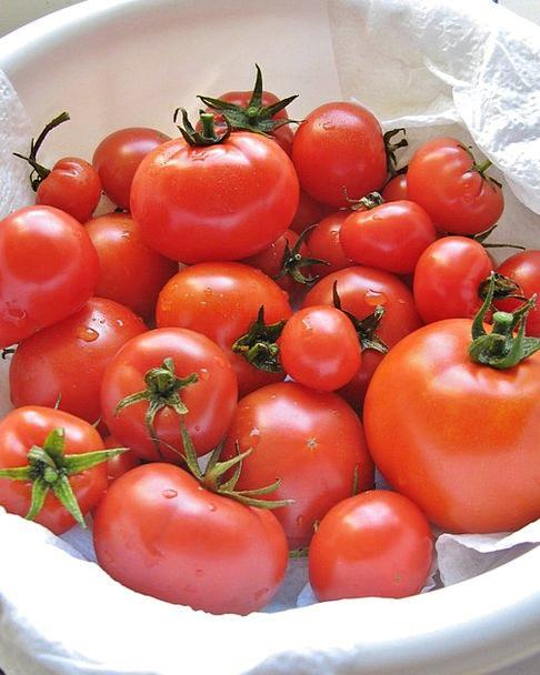 Tomatoes Drink Nourishment Food Harvest Crop Food