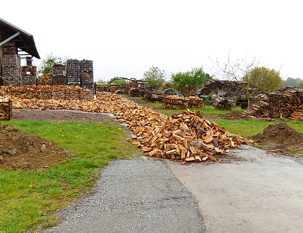 Wood Firewood Kindling Holzstapel Growing Stock Co