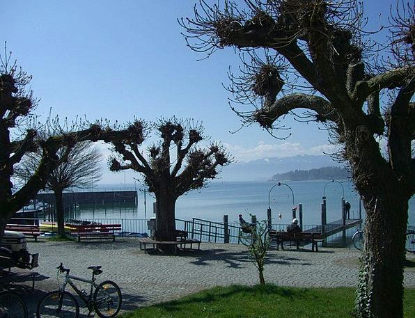Promenade Walkway Lake Constance Friedrichshafen P