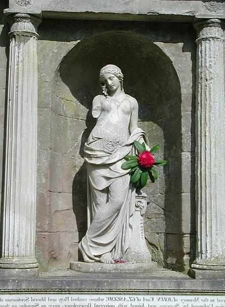 Woman Lady Fashion Feminine Beauty Flower Floret F