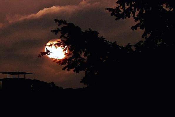 Moon Romanticize Moonbeam Night Nightly Moonlight