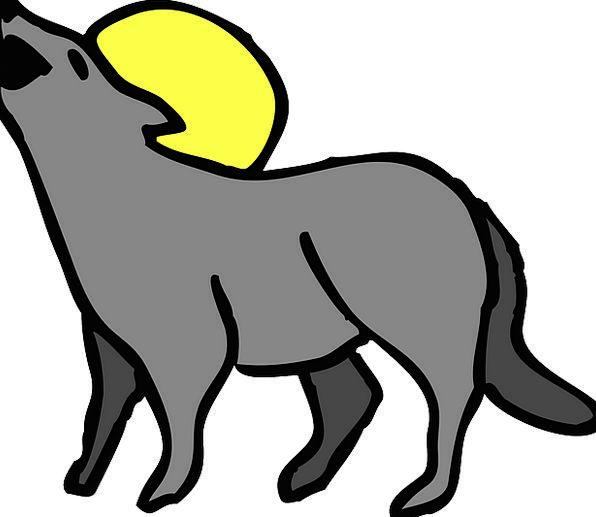 Coyote Loud Moon Romanticize Howling Howl Wail Wol