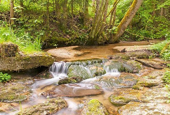 Water Aquatic Landscapes Afterward Nature Nature C
