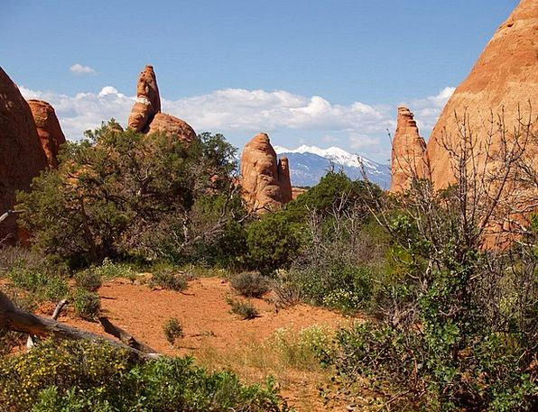 Devil'S Garden Landscapes Nature Utah Arches Natio