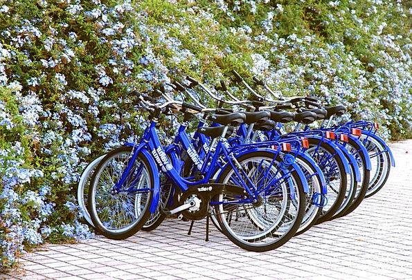 Wheels Helms Bikes Blue Azure Bicycles Series Bicy
