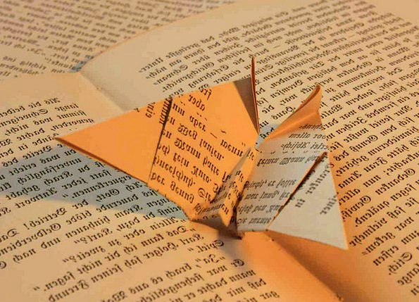 Book Volume Paper Newspaper Origami Folded Doubled
