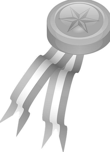 Platinum Medal Ribbon Band Medallion Reward Prize