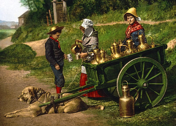 Milk Exploit Wagon Photochrom Cart 1890 Dog Peddle