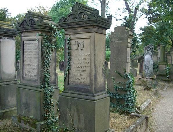 Grave Stones Worms Larvae Jewish Cemetery