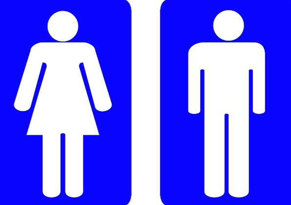 Symbol Male Masculine Sign Washroom Female Feminin