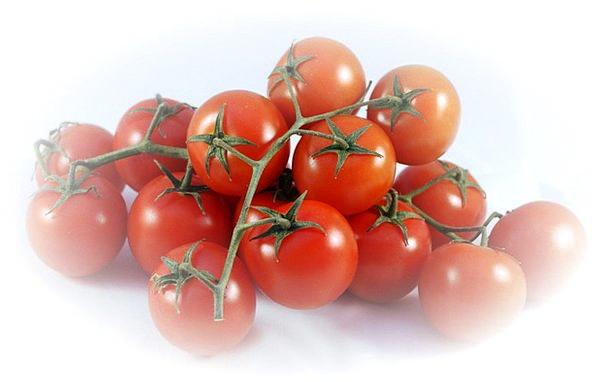 Bush Tomatoes Drink Food Red Bloodshot Tomatoes Sa
