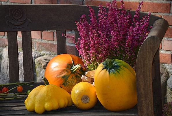 Gourd Autumn Decoration Pumpkin Thanksgiving Bless