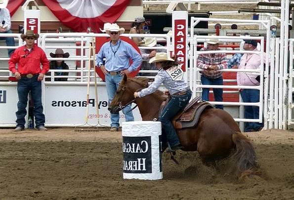 Barrel Racing Mount Rider Proviso Horse Outdoor Ac