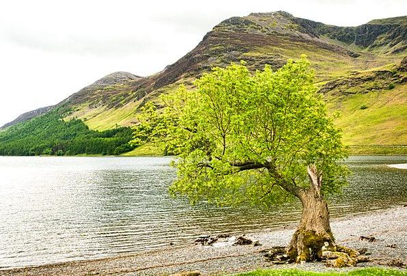 Lake District Landscapes Nature Lake Freshwater Cu
