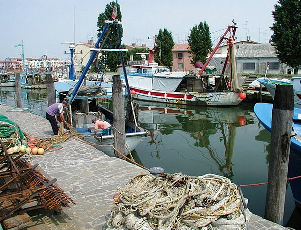 Port Harbor Craft Industry Work Effort Fishing Boa