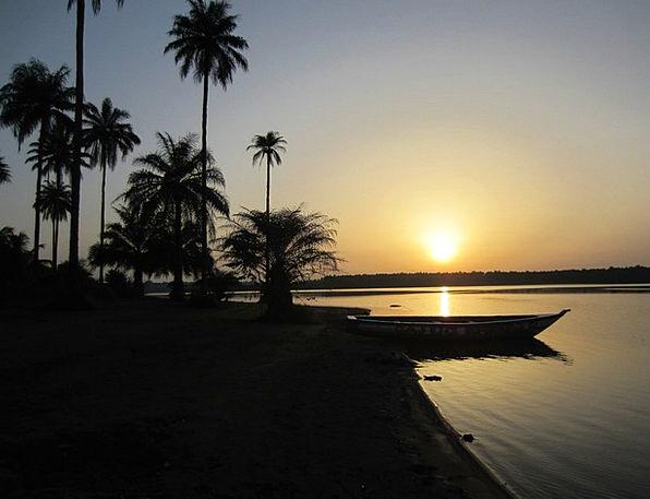 Sunset Sundown Vacation Travel Africa Guinea Palm