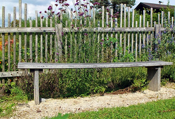 Wood Fence Landscapes Barrier Nature Wood Timber F