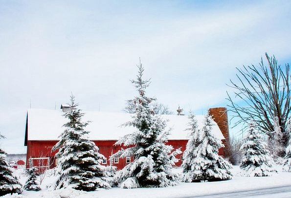 Winter Barn Snowflake Rural Snow Farm Farmhouse Re