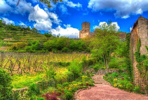 Kaysersberg France Alsace Castle Ruins Colorful Vi