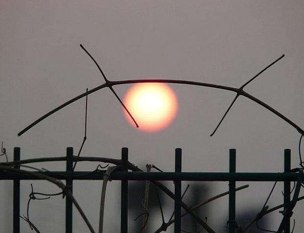 Sun Light Gloomy Depressed Pale Leave Mood Disposi