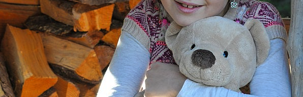 Child Youngster Teddy Soft Toy Teddy Bear
