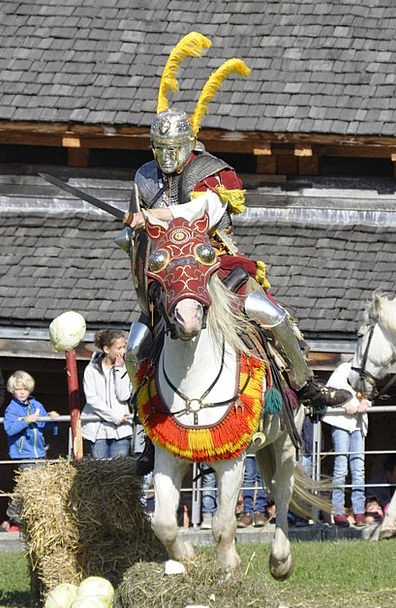 Romans Cavalry Mounted troops Reiter Fight Contest