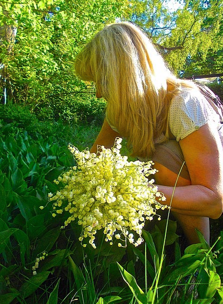 Flower Pickers Forest Glade Lilies Of The Valley S